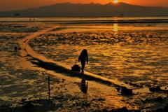 干潟と漁婦