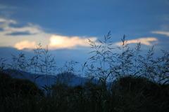 夕暮れの川原