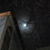 月夜の晩は