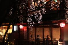 祇園白川夜桜座敷