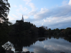 新宿と自然と