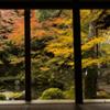 秋の窓 京都①