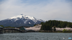 鶴の舞橋と岩木山