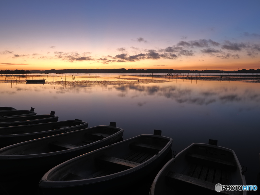 久しぶりの西印旛沼③
