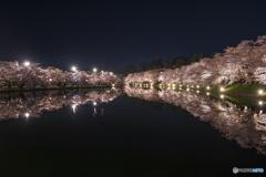 桜は夜②(弘前公園)