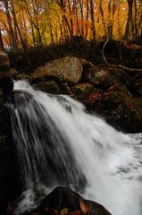 涼秋の渓流瀑