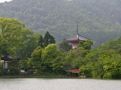 大覚寺大沢池 夏