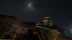 夜桜と月とお城