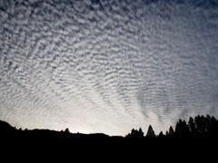 たぶんうろこ雲