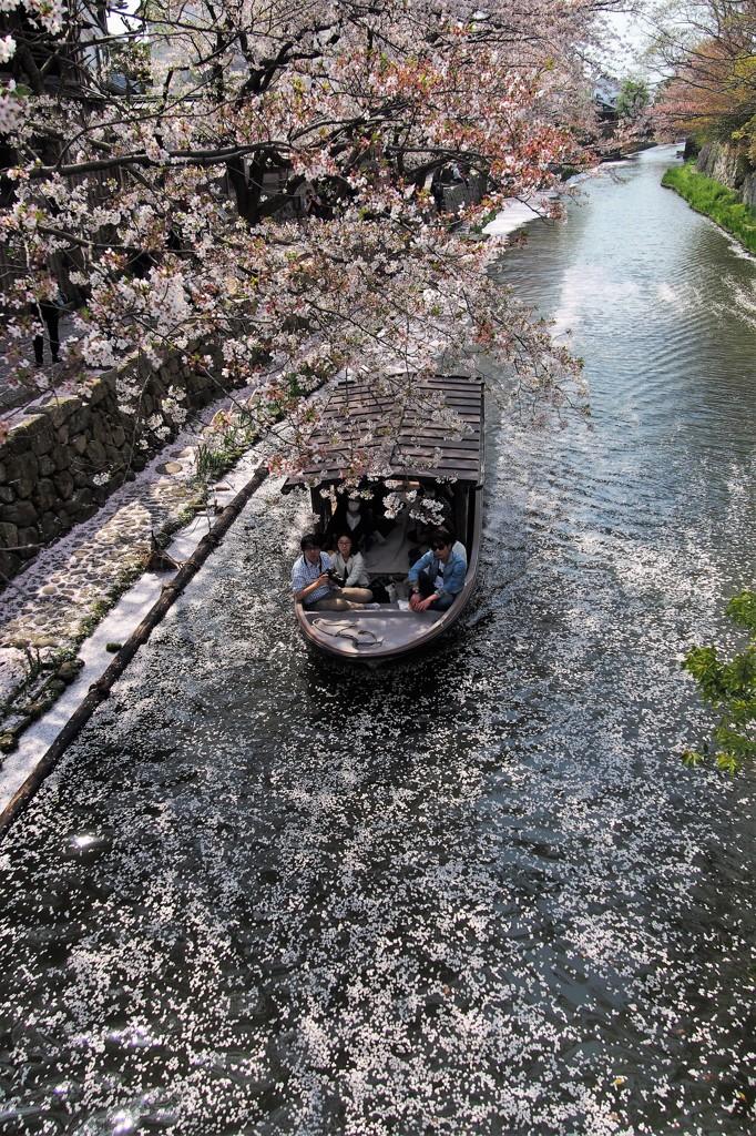 贅沢な舟遊び