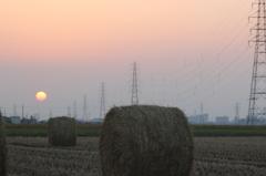 夕日とロール