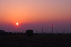 藁ロールと夕日
