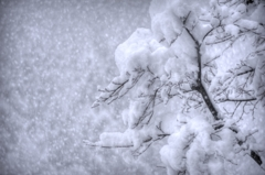 『2013年1月 長岡 雪景色①』