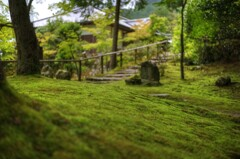 『神護寺』