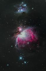 トホホなオリオン大星雲 《段階露光版》