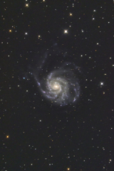 M101 回転花火銀河《APS-C》