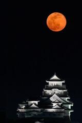 白鷺城と黄色い月