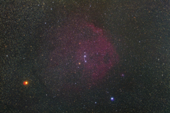 星空を泳ぐ赤いエンゼルフィッシュ