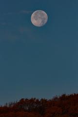 朝の月 ~太陽にバトンタッチ~