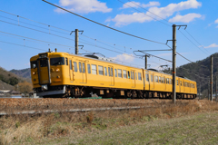 Yellow Trainが行く