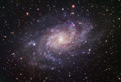 お粗末なM33銀河
