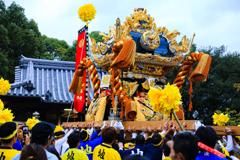 姫路の祭り 夕刻の部 ③