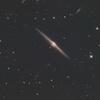 春の銀河祭り 《NGC4565》
