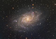 トホホ…なM33銀河