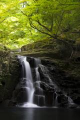 新緑の荷担滝