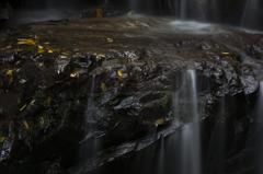 乙女渓谷の秋 ~岩と落ち葉~