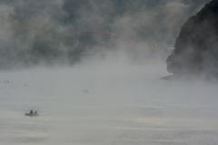 朝霧に遊ぶ