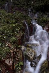 道脇の小滝