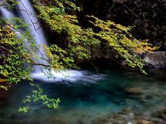 乙女渓谷 和合の滝