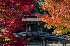 紅葉の中の無際橋