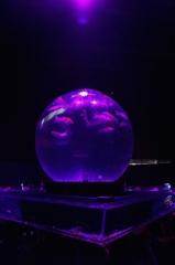 ボール金魚鉢