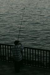 釣りはロマン