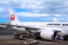 JAPAN AIRLINE Boeing 787