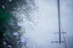 雨上がり。。