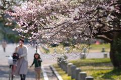 春~駆ける♪