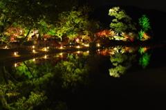 夜の大沢池