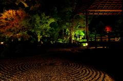 秋夜の庭園