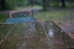 雨のクラウン