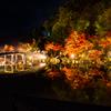 神勝寺のライトアップ