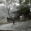 東山 雪 (2)