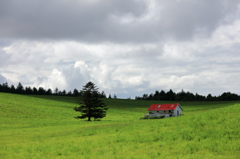 メルヘンな丘