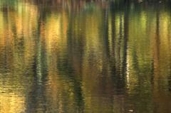 秋色のキャンバス