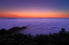 染まる雲海