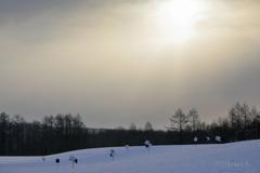 真冬の太陽