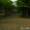 6月20日。あてもなく曇った福井市。