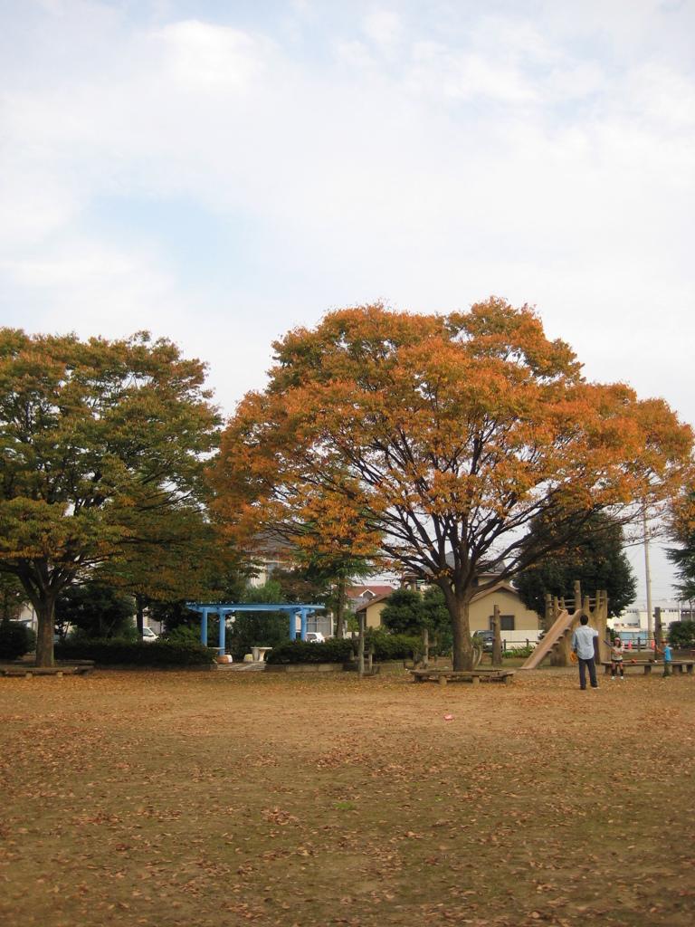 ご近所スナップ 朝・公園・紅葉・親子